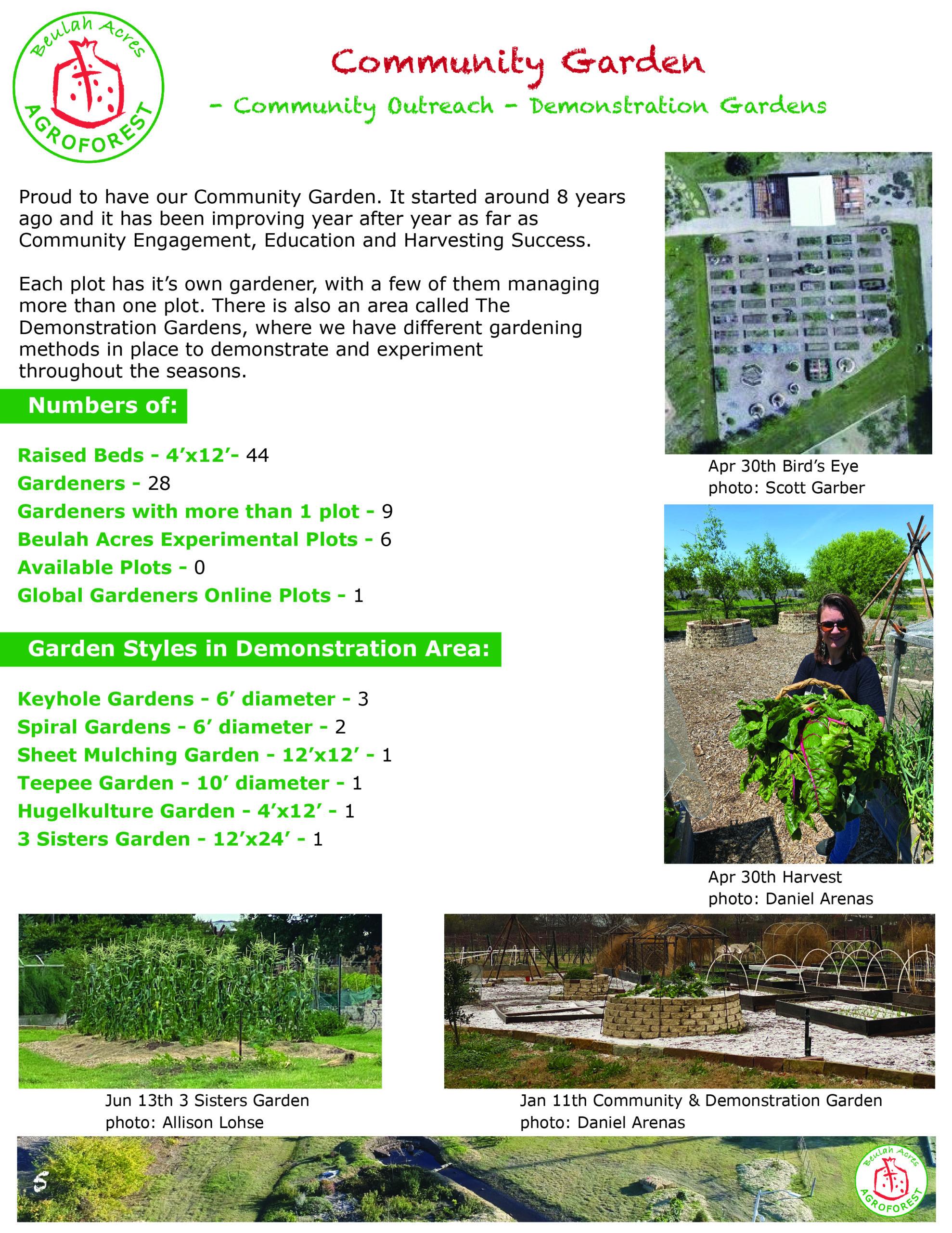 5 COMMUNITY GARDEN 2020 report