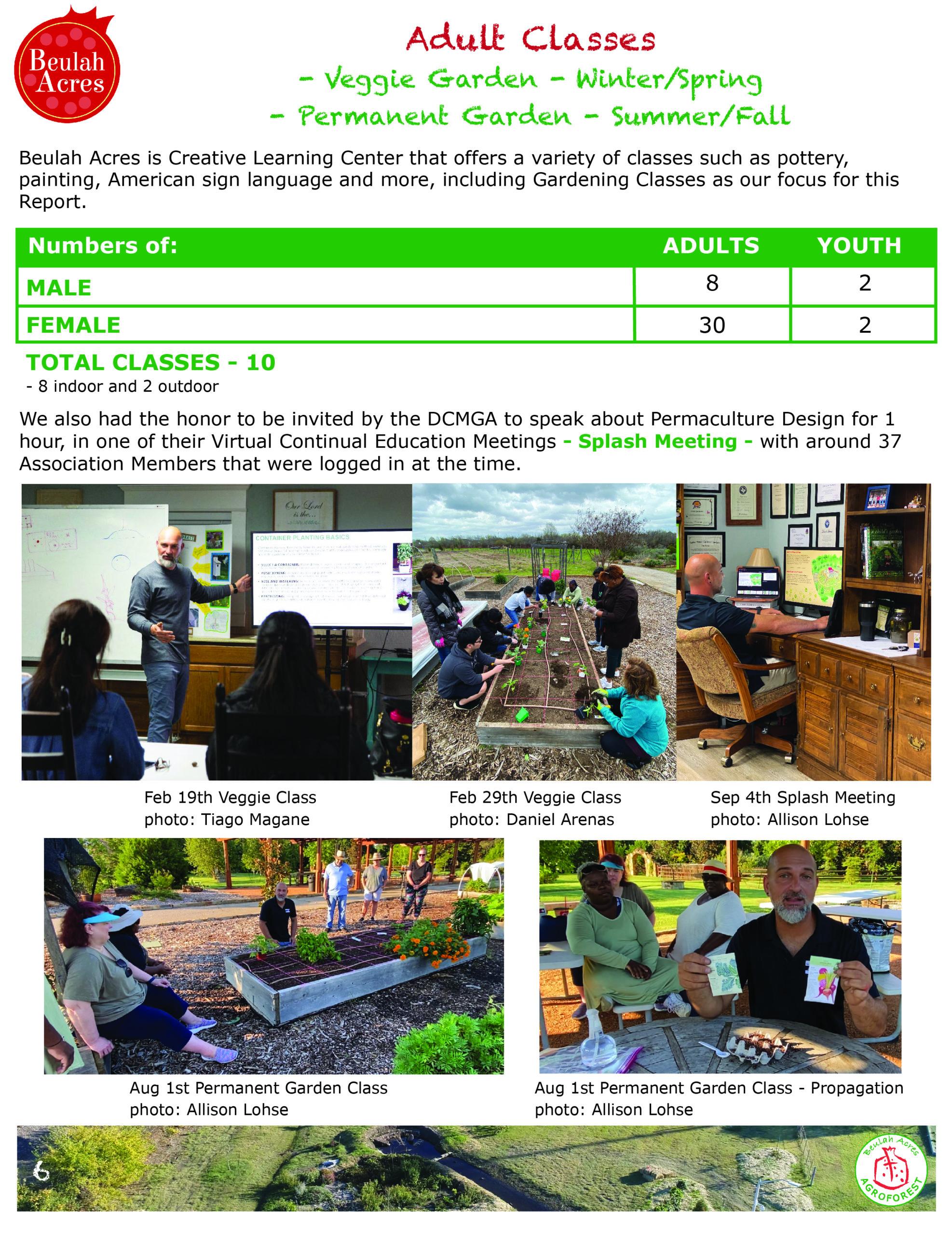 6 ADULT CLASSES 2020 report